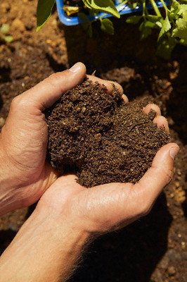 Hands holding soil --- Image by © Fancy/Veer/Corbis